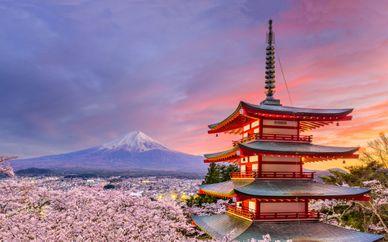 Tokyo & Kyoto