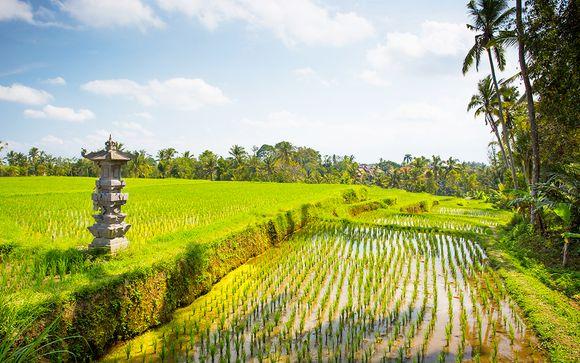 Welkom op... Bali