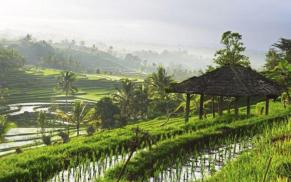 Welkom in ... Bali !