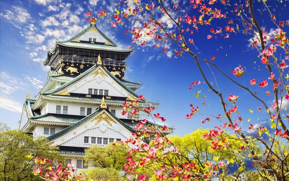 Welkom in ... Japan !