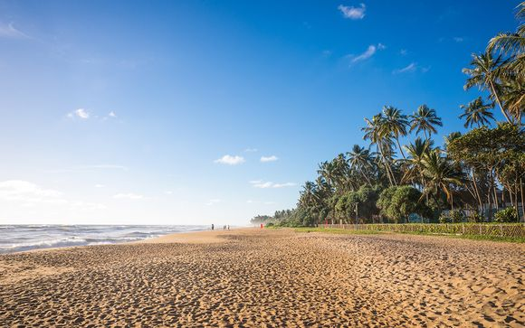 Willkommen in... Indien und Sri Lanka!