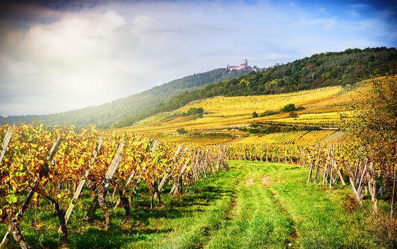Willkommen in... Frankreich!