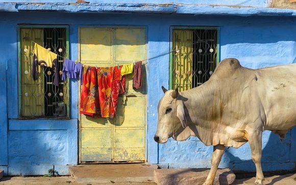Willkommen in... Indien!