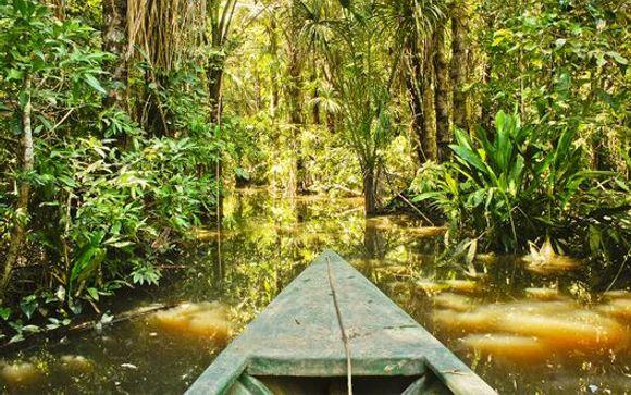 Ihre Verlängerung in Amazonien im Detail (Angebot 2)