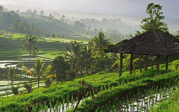 Ihr optionaler Aufenthalt in Ubud