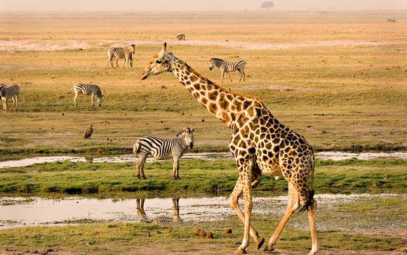 Willkommen in... Botswana!