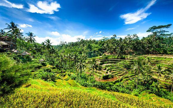 Willkommen auf... Bali !