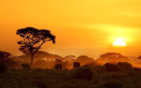 Willkommen in... Kenia!
