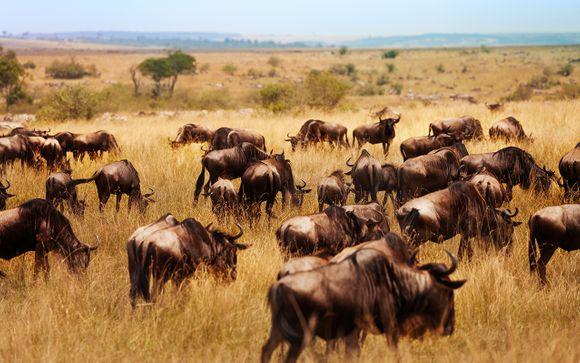 Willkommen in.... Kenia!