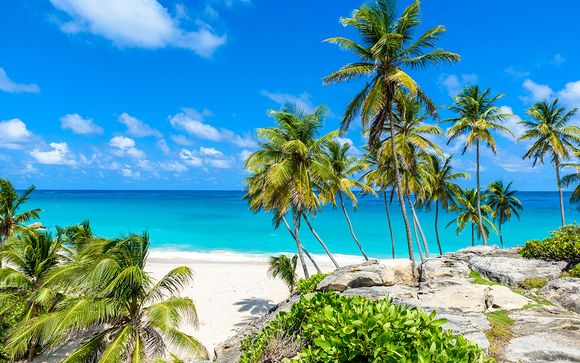 Willkommen auf... der Insel Barbados!