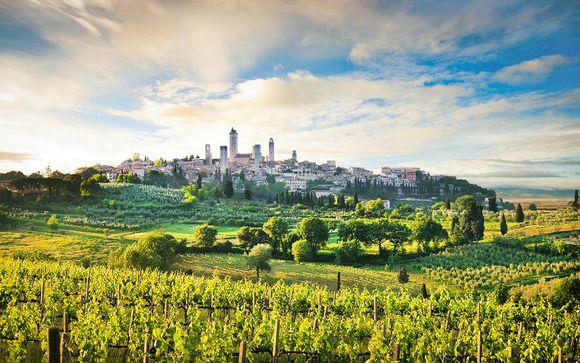 Inmersión en el corazón de los viñedos italianos