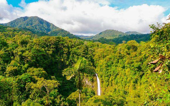 Costa Rica San José  Experiencia en el bosque lluvioso desde 2.112,00 €