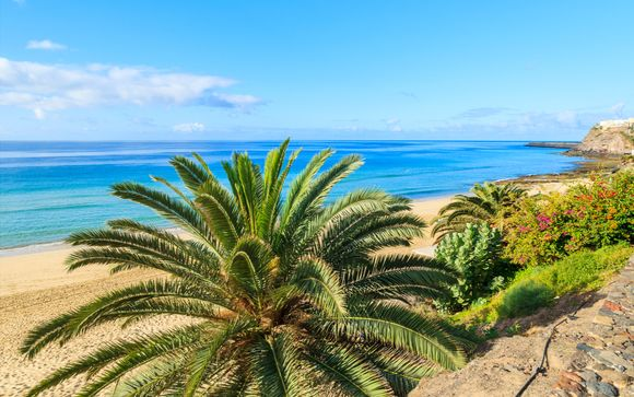 Fuerteventura: Morro del Jable - Labranda Cactus Garden 4*