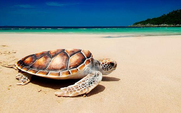 Sri Lanka Colombo - Esenciales de Sri Lanka con extensión a playa desde 1.340,00 €