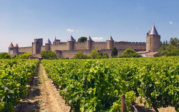 Experiencia medieval en el corazón de Bastide Saint Louis