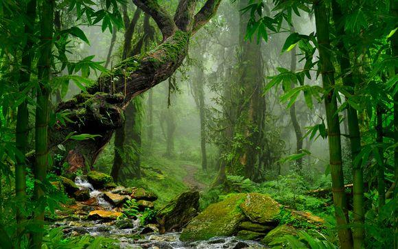 Ecuador con Selva Amazónica