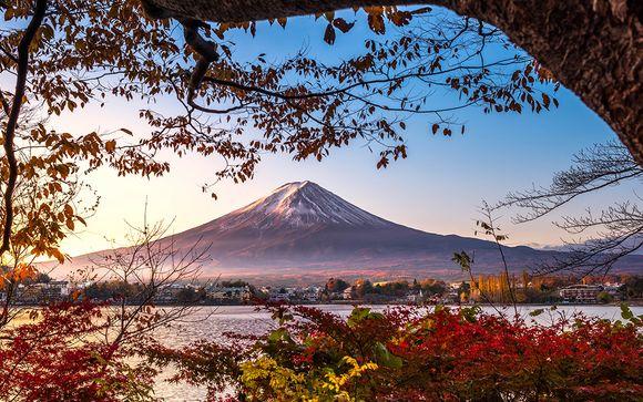 Circuit le Japon en immersion