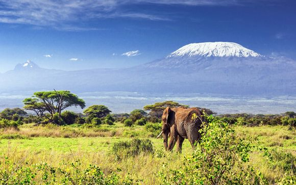 Hôtel Swahili Beach Resort 5* et Safaris