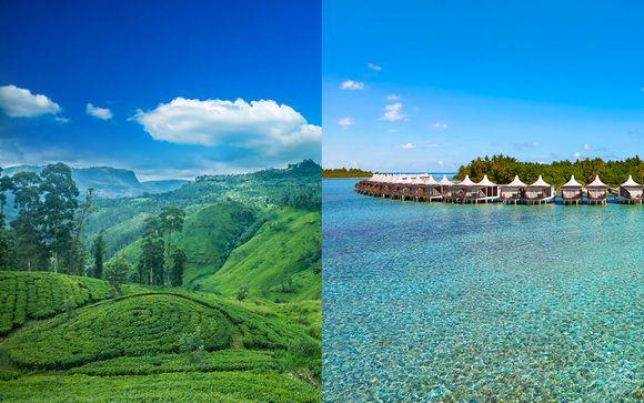 Entre nature sauvage et paradis terrestre - Malé -