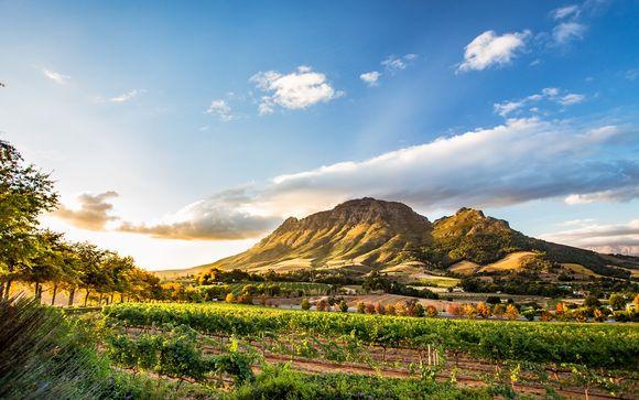 Autotour Cape Town, Vin et Safari