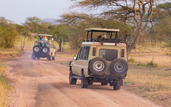 Votre safari possible dans le cadre de l'offre 2