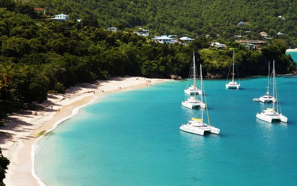 Rendez-vous... aux îles Grenadines