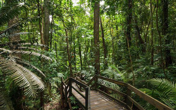 Mettez une option sur l'évasion à Cairns