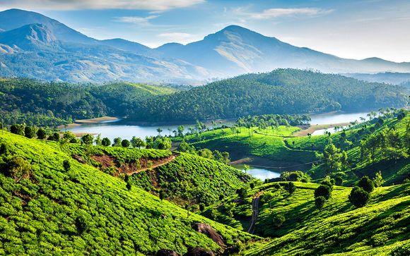 Circuit Merveilles du Kerala privatif ou en petit groupe 9j/7n
