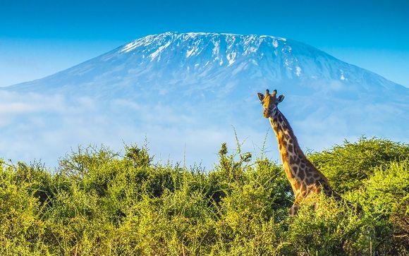 Safari inoubliable au coeur de la Tanzanie