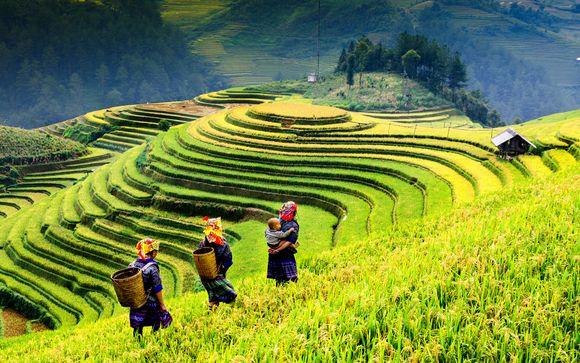 Votre extension au Vietnam (si vous choisissez l'offre 2)