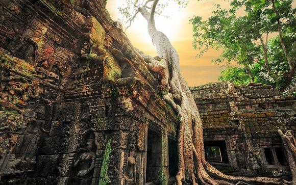 Zoom sur votre programme au Cambodge