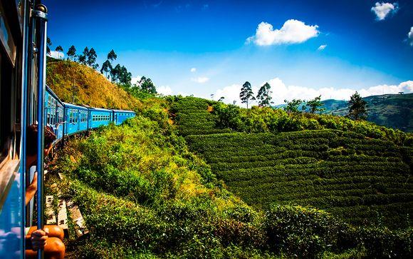 Tour dello Sri Lanka e soggiorno mare a Wadduwa