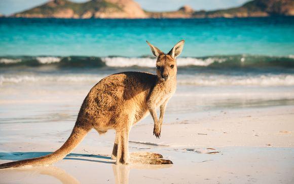 Tour dell'Australia da Melbourne alla costa del Pacifico