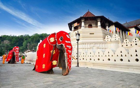 Tour tra i templi dello Sri Lanka