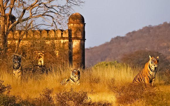 Il Triangolo d'Oro e mini safari al parco Ranthambore