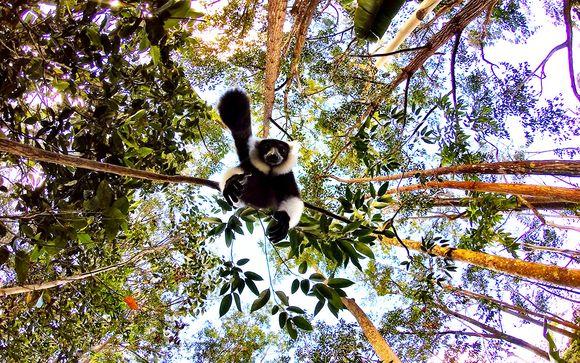 Alla scoperta del Madagascar