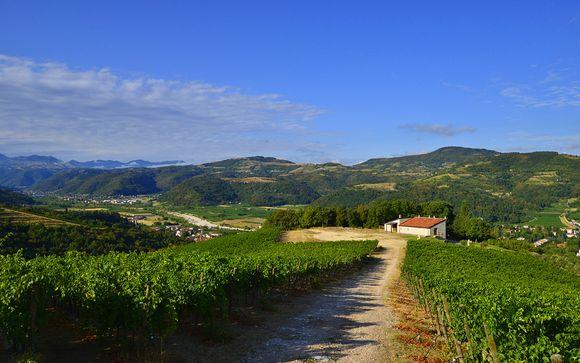 Terra di grandi vini