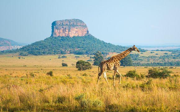 Alla scoperta del Sud Africa e di Mauritius