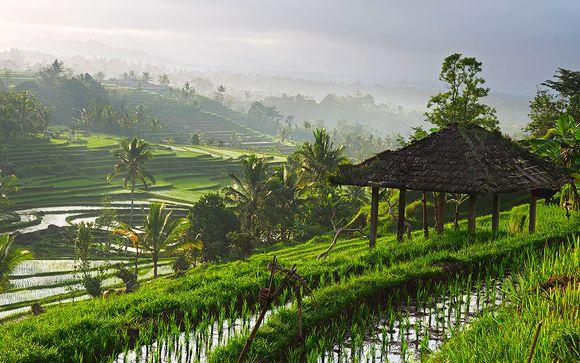 Alla scoperta di Ubud, Sanur, Nusa Dua