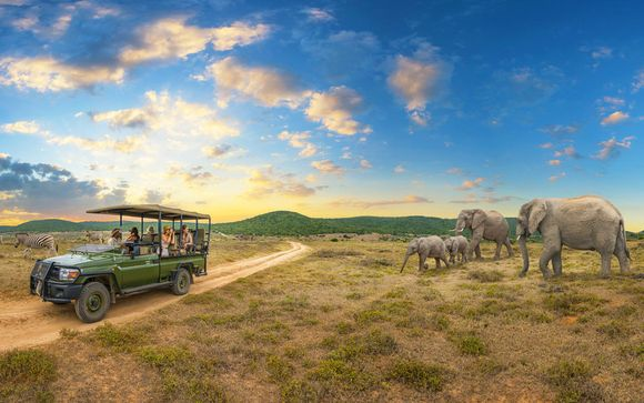 Circuito Big Five in Sudafrica & Tamarina Golf & spa Boutique Hotel 4* a Mauritius