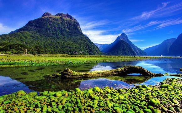 Alla scoperta della Nuova Zelanda e Dubai
