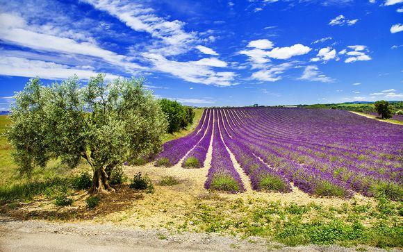 Welkom in ... Les Baux-de-Provence!