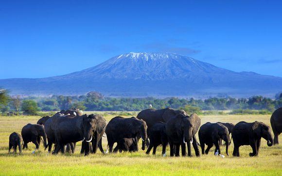 Safari Tsavo East, Amboseli en Taita Hills Saltlick - 4 dagen/3 nachten