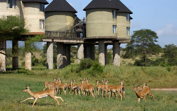 Safari Accommodatie