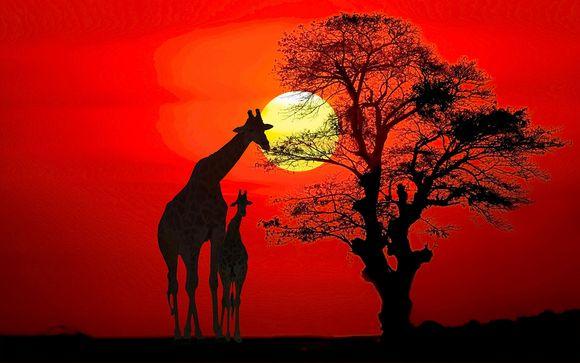 3 nachten op safari in Tsavo East / Amboseli / Taita Hills