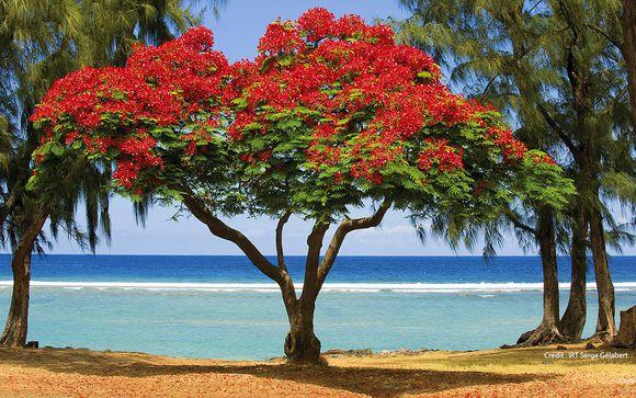 Welkom op... Réunion