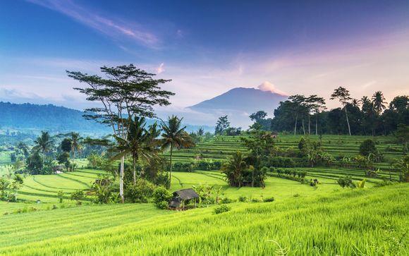 Destination...Bali