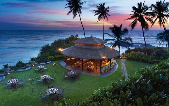 Indian Ocean Beach Paradise