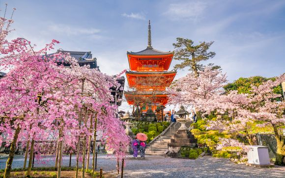 Japan Discovery Tour