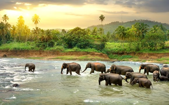 Sri Lanka Tour & Beach Stay 4*